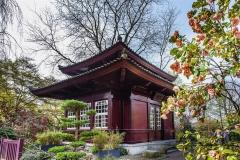 Japan. Garten Lev. Teehaus
