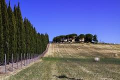 Auf dem Weg nach San Gimignano